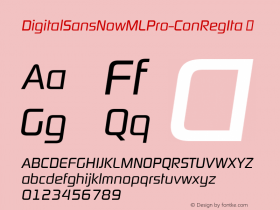 DigitalSansNowMLPro-ConRegIta