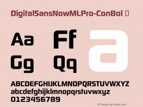 DigitalSansNowMLPro-ConBol