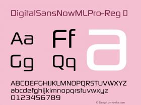 DigitalSansNowMLPro-Reg