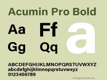 Acumin Pro