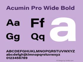 Acumin Pro Wide