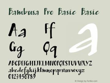 Bambusa Pro Basic