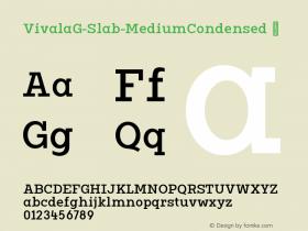 VivalaG-Slab-MediumCondensed