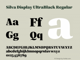 Silva Display UltraBlack