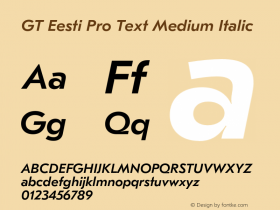 GT Eesti Pro Text Medium