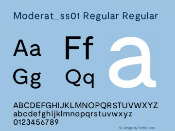 Moderat_ss01 Regular