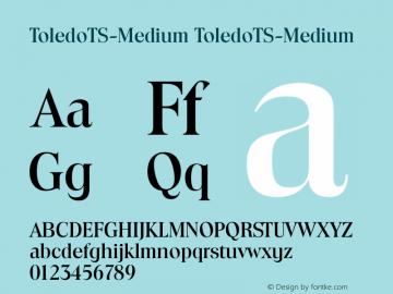 ToledoTS-Medium
