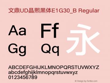 文鼎UD晶熙黑体E1G30_B