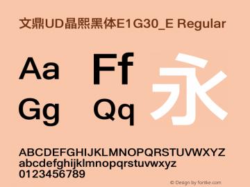 文鼎UD晶熙黑体E1G30_E