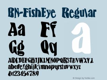 BN-FishEye