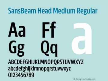 SansBeam Head Medium