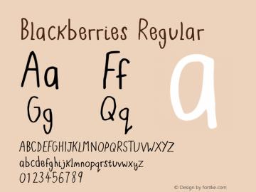 Blackberries Regular Version 1.00 June 13, 2016, initial release图片样张