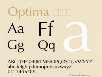 Optima 粗斜体 11.0d2e1 Font Sample