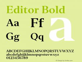 Editor Bold Version 1.0图片样张
