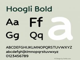Hoogli Bold Version 1.00 b007图片样张