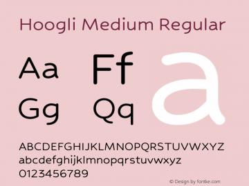 Hoogli Medium Regular Version 1.00 b007图片样张