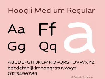 Hoogli Medium Regular Version 1.000;PS 001.000;hotconv 1.0.88;makeotf.lib2.5.64775图片样张