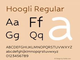 Hoogli Regular Version 1.000;PS 001.000;hotconv 1.0.88;makeotf.lib2.5.64775图片样张