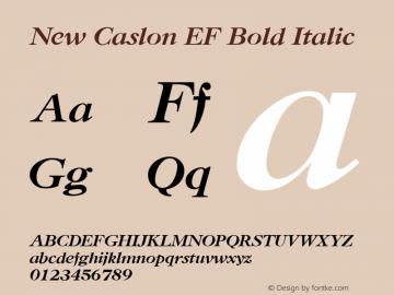 New Caslon EF Bold Italic Version 1.000 Font Sample