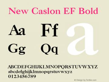 New Caslon EF Bold Version 1.000 Font Sample