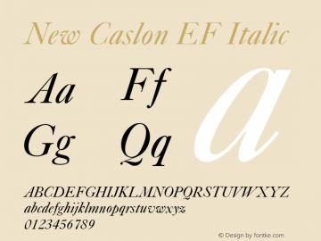 New Caslon EF Italic Version 1.000 Font Sample