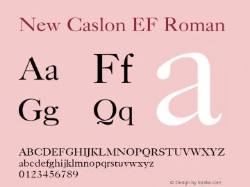New Caslon EF Roman Version 1.000 Font Sample