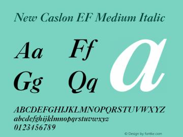 New Caslon EF Medium Italic Version 1.000 Font Sample