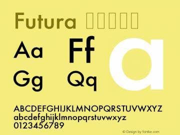Futura 紧缩中等体 11.0d2e1 Font Sample