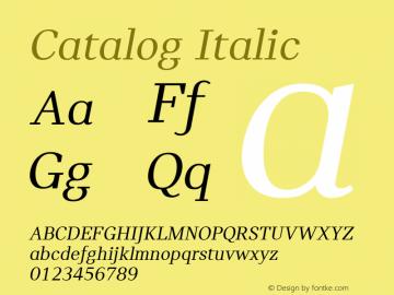 Catalog Italic Version 3.001图片样张