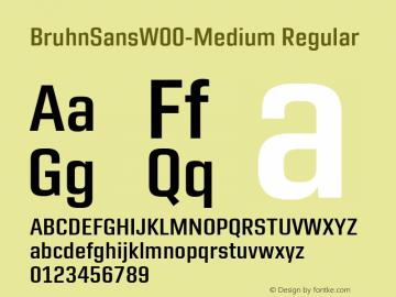 BruhnSansW00-Medium Regular Version 1.00图片样张