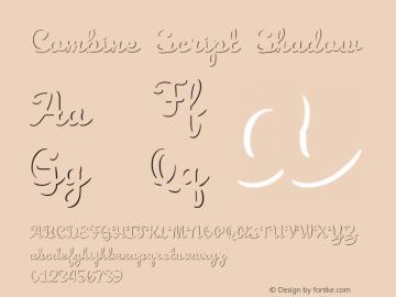 Combine Script Shadow Version 1.000图片样张