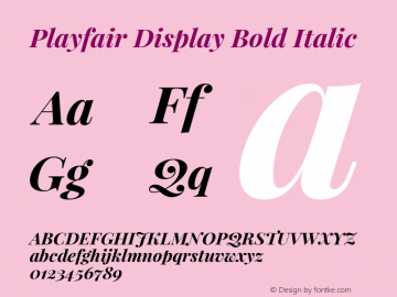 Playfair Display Bold Italic Version 1.004;PS 001.004;hotconv 1.0.70;makeotf.lib2.5.58329 Font Sample