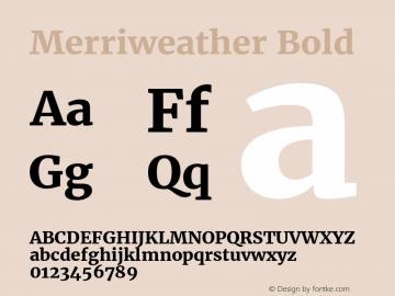 Merriweather Bold Version 1.570; ttfautohint (v1.3) -l 8 -r 32 -G 0 -x 0 -H 60 -D latn -f cyrl -m