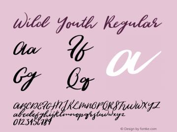 Wild Youth Regular Version 1.000;PS 001.000;hotconv 1.0.88;makeotf.lib2.5.64775图片样张