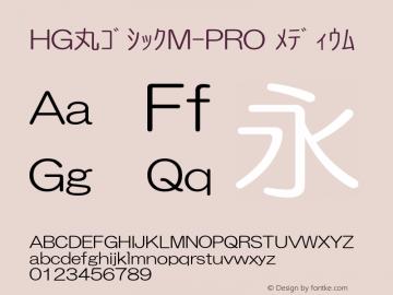 HG丸ゴシックM-PRO メディウム Ver.1.01图片样张