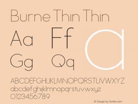 Burne Thin Thin Version 1.00 2013图片样张