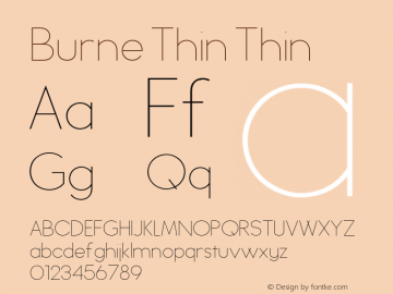 Burne Thin Thin Version 1.00 2013图片样张