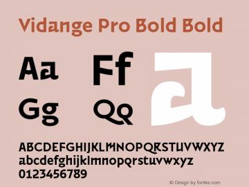 Vidange Pro Bold Bold Version 1.100 Font Sample