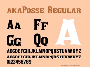akaPosse Regular Version 1.01 2005图片样张