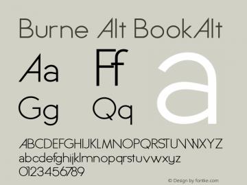 Burne Alt BookAlt Version 1.00 2013 Font Sample
