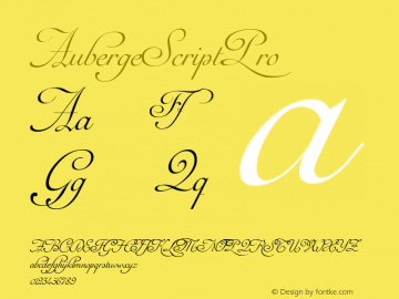 AubergeScriptPro ☞ Version 1.000;com.myfonts.easy.sudtipos.auberge-script.pro.wfkit2.version.4mn9 Font Sample