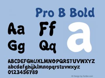 小塚ゴシック Pro B Bold Version.1 2009 Font Sample