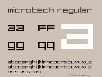MicroTech Regular Version 1.2; 2001图片样张