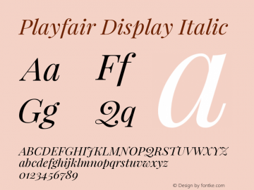 Playfair Display Italic Version 1.004;PS 001.004;hotconv 1.0.70;makeotf.lib2.5.58329 Font Sample