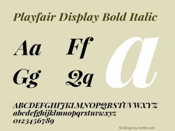 Playfair Display Bold Italic Version 1.002;PS 001.002;hotconv 1.0.70;makeotf.lib2.5.58329 Font Sample