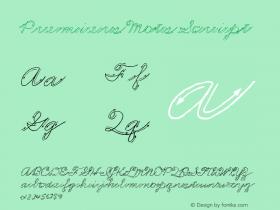 Premiers Mots Script Version Macromedia Fontograp Font Sample