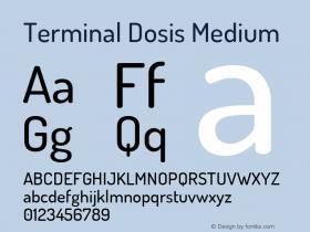 Terminal Dosis Medium Version 1.007图片样张