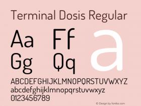 Terminal Dosis Regular Version 1.007图片样张