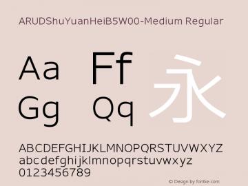 ARUDShuYuanHeiB5W00-Medium Regular Version 1.00图片样张