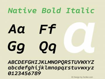 Native Bold Italic Version 1.000;PS 001.000;hotconv 1.0.88;makeotf.lib2.5.64775 Font Sample